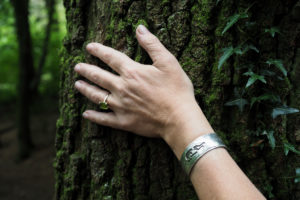 Shaura Hall tree 3