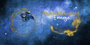 Pilamaya tall emerge header